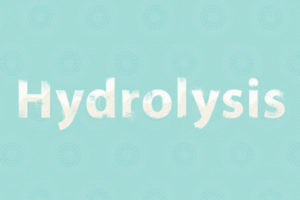 How To Get The Most Out Of Your Sisi Footwear And Prevent Hydrolysis